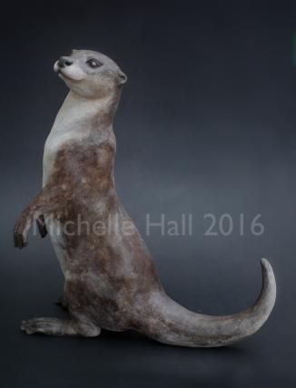 MHall Otter web
